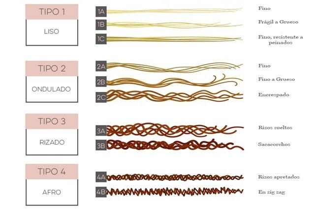 tipos-de-cabello-rizado-clasificacion-andre-walker (2)
